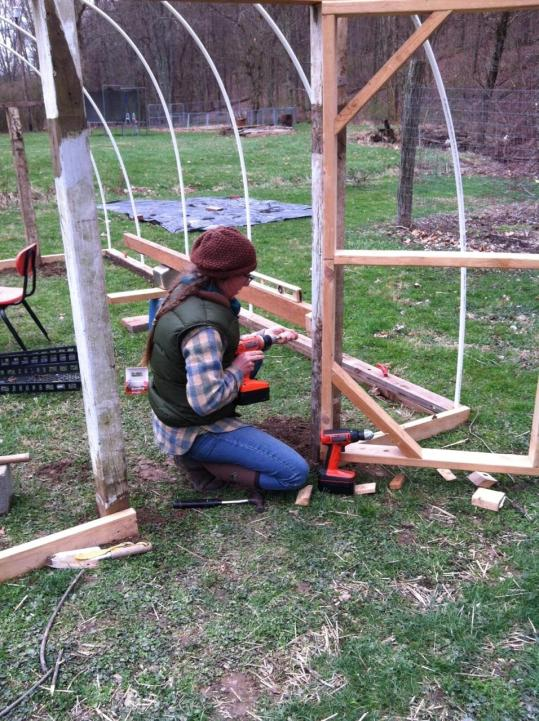 Betti working on Greenhouse